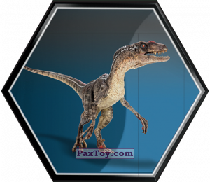 PaxToy.com - 20 Velociraptor Mascul из Carrefour: Jurassic World