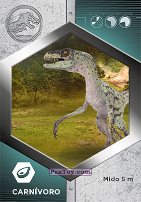 PaxToy.com - 47 Velociraptor Hembra из Supermercados DIA: Jurassic World - Cards