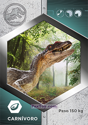 PaxToy.com - 48 Velocirraptor Macho из Supermercados DIA: Jurassic World - Cards