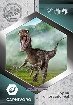 PaxToy.com - 50 Raptor - Blue из Supermercados DIA: Jurassic World - Cards