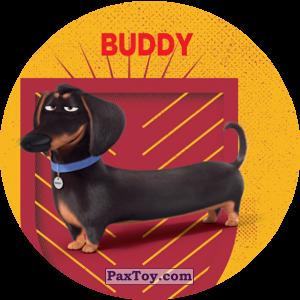PaxToy.com - 002 Buddy из Cheetos: La Vida Secreta De Tus Mascotas