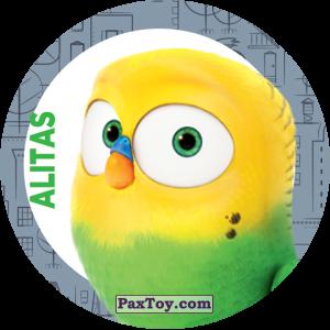 PaxToy.com - 004 Alitas из Cheetos: La Vida Secreta De Tus Mascotas