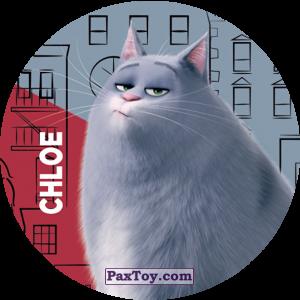 PaxToy.com - 005 Chloe из Cheetos: La Vida Secreta De Tus Mascotas