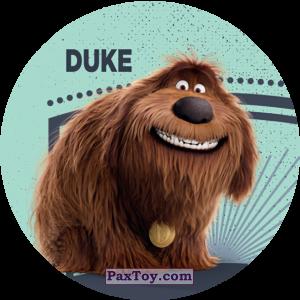 PaxToy.com - 008 Duke из Cheetos: La Vida Secreta De Tus Mascotas