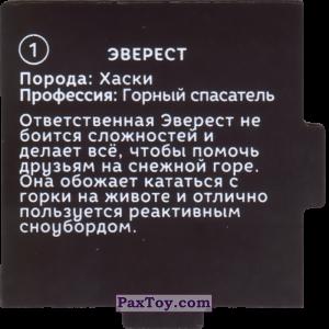 PaxToy.com - 01 Пазл - Эверест (Сторна-back) из Растишка: Щенячий патруль