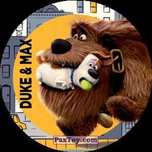 PaxToy.com - 010 Duke & Max из Cheetos: La Vida Secreta De Tus Mascotas