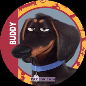 PaxToy.com - 015 Buddy из Cheetos: La Vida Secreta De Tus Mascotas