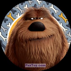 PaxToy.com - 021 Duke из Cheetos: La Vida Secreta De Tus Mascotas