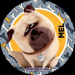 PaxToy 023 Mel