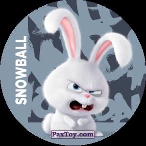PaxToy.com - 024 Snowball из Cheetos: La Vida Secreta De Tus Mascotas