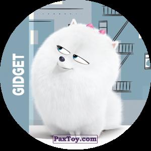 PaxToy.com - 027 Gidget из Cheetos: La Vida Secreta De Tus Mascotas