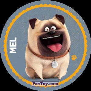 PaxToy.com - 032 Mel из Cheetos: La Vida Secreta De Tus Mascotas