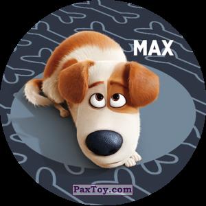 PaxToy.com - 037 Max из Cheetos: La Vida Secreta De Tus Mascotas
