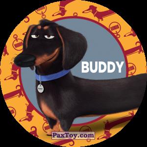 PaxToy.com - 049 Buddy из Cheetos: La Vida Secreta De Tus Mascotas