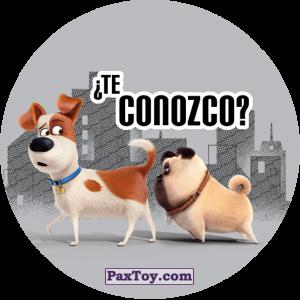 PaxToy.com - 050 Te Conozco из Cheetos: La Vida Secreta De Tus Mascotas