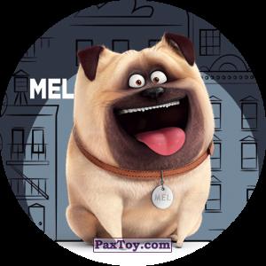 PaxToy.com  Фишка / POG / CAP / Tazo 062 Mel из Cheetos: La Vida Secreta De Tus Mascotas