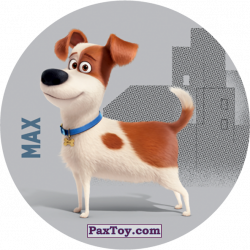 PaxToy 065 Max