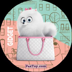PaxToy.com  Фишка / POG / CAP / Tazo 067 Gidget из Cheetos: La Vida Secreta De Tus Mascotas