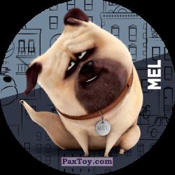 PaxToy 070 Mel