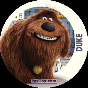 PaxToy.com  Фишка / POG / CAP / Tazo 071 Duke из Cheetos: La Vida Secreta De Tus Mascotas