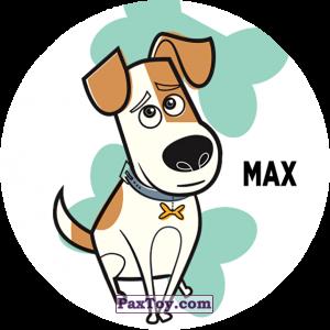 PaxToy.com  Фишка / POG / CAP / Tazo 077 Max из Cheetos: La Vida Secreta De Tus Mascotas