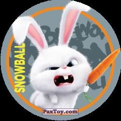 PaxToy 113 Snowball (METAL)