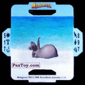 PaxToy.com - 12 Gloria из Cerezos: Madagascar (TAZOS / Q-Bitazos)