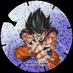 PaxToy 08 30 Goku   Sayayin