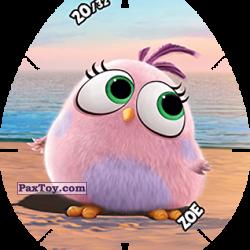 PaxToy 20 ZOE