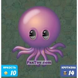 PaxToy 07 ЧУДО ОСМИНОЖКА