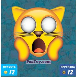 PaxToy 48 ВАУ МЯУ