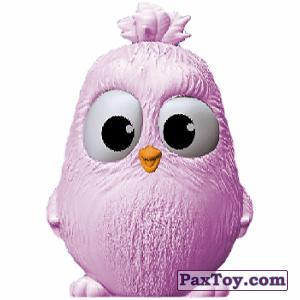 PaxToy.com - 12 ZOE из SPAR: Angry Birds 2
