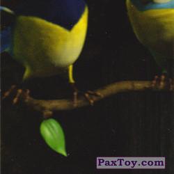 PaxToy 16 Март 4 мз 6