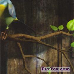 PaxToy 17 Март 5 мз 6