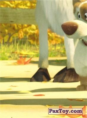PaxToy.com  Наклейка / Стикер 59 Октябрь 5 из 6 из Лента: Маша и медведь в Ленте
