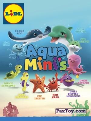 PaxToy Lidl: Aqua Mini's