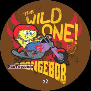 072 The Wild One!