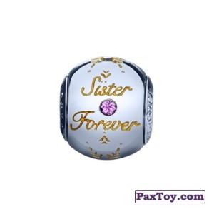 PaxToy.com - 10 Шарм с гравировкой «Сестры навсегда» из Корона: «Холодное сердце» Коллекция шармов от всего сердца