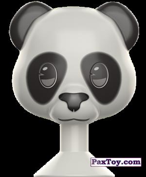 19 Панда